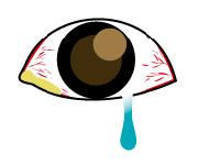 目やに が 出る 病気